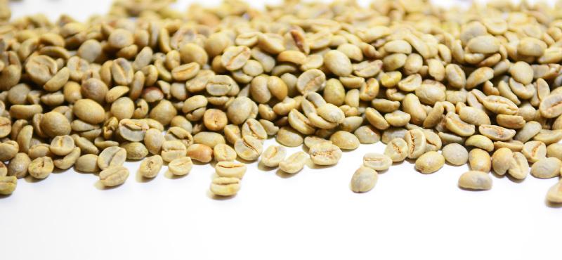 Saszetki zielony jęczmień ile można schudnąć